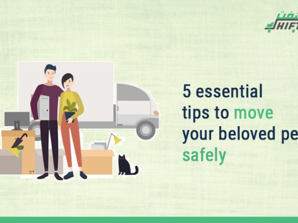 5 Essential Tips To Move Your Beloved Pet Safely